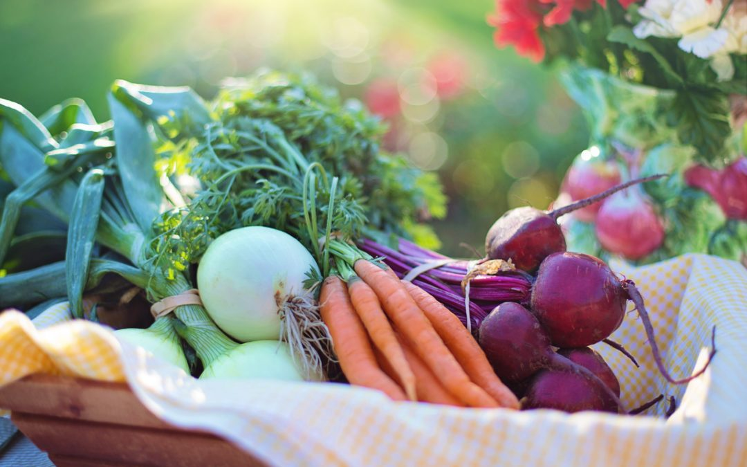 Is organic food better for our health?